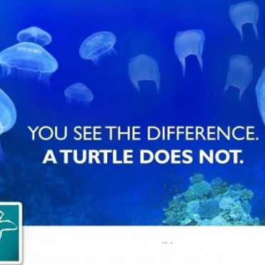 Quotes About Marine Pollution Blue Life