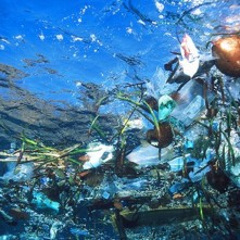 Sea garbage 1