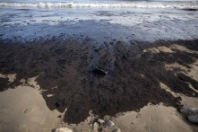 Santa Barbara oil spill06